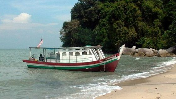 Half-Day Beach Break to Monkey Beach from Penang Including BBQ Lunch
