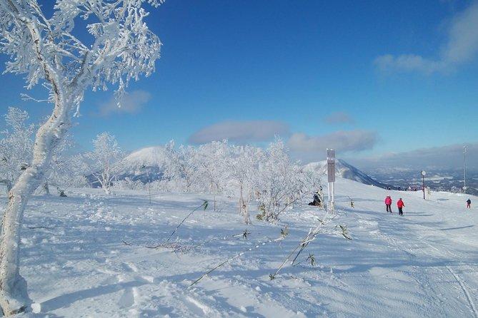 Shared Departure Transfer : Ski Resort in Hokkaido to Shin Chitose Airport