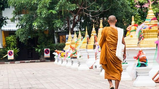 Morning Buddhist Almsgiving and Temples Tour in Chiang Mai