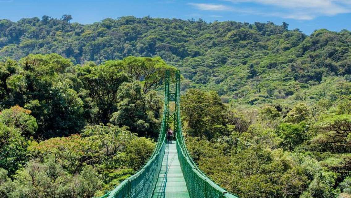 Selvatura Park Eco Adventure Tour of Monteverde