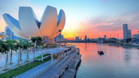 싱가포르 아트사이언스 뮤지엄 입장권