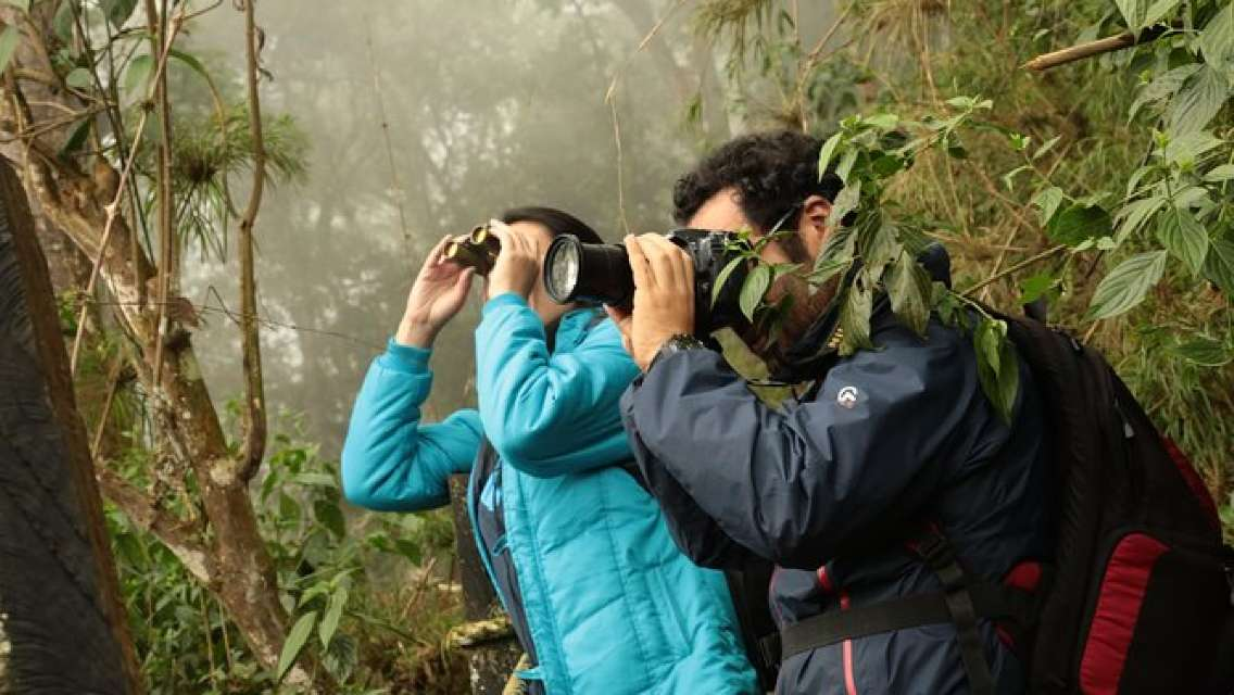 Hiking Adventure to Chicaque National Park, Cloud & Oak Forests—Birdwatching