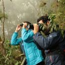 Day Trip to Chicaque National Park: Cloud Forest, Birdwatching—Or Only Transport