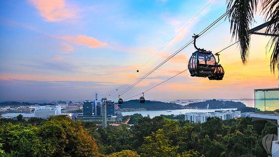 싱가포르 케이블카 탑승권