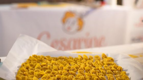 Small-group Tortellini Class at a local's home with lunch or dinner in Bologna