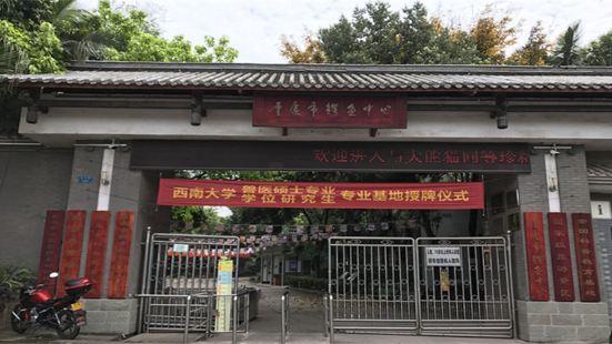 Chongqing Crocodile Breeding Center
