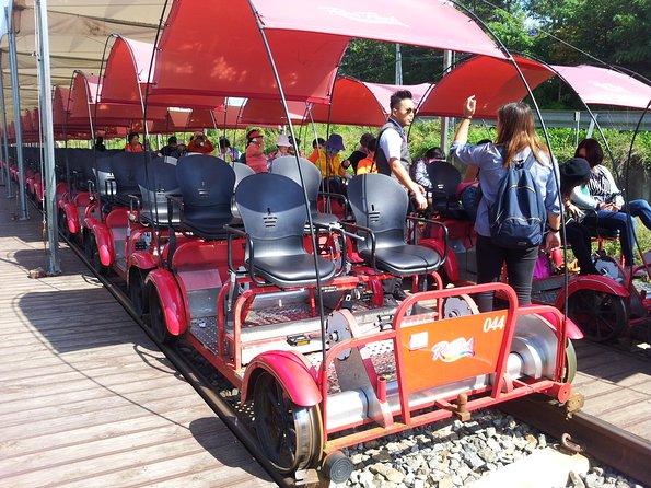 Private Tour Rail Bike & Nami Island & Petite France (More Members Less Cost)