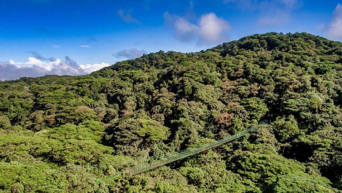 Hanging Bridges & Tour Guide From Monteverde