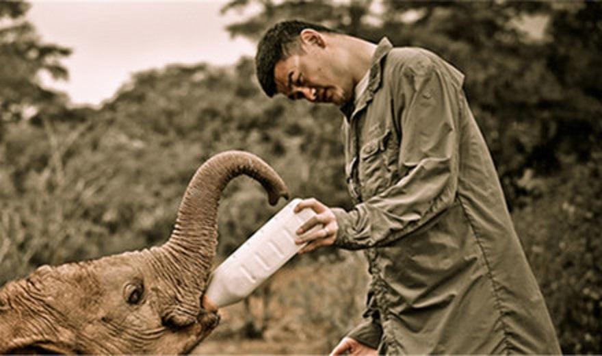 肯尼亞內羅畢大象孤兒院/長頸鹿公園/女工珠子廠/海倫故居一日遊