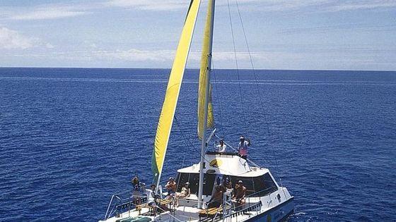 Diamond Head Sail and Snorkel Adventure