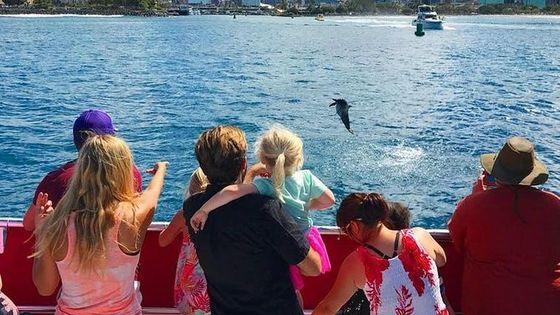 Hawaii | Waikiki Beach Sightseeing Cruise - Glass Bottom Boat