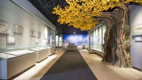 千島湖自然博物館
