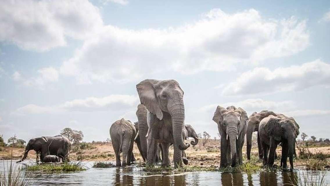 8 Days Serengeti National Park, Ngorongoro crater & Zanzibar