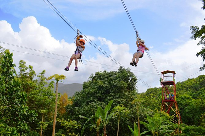 Zipline Canopy and El Yunque Rainforest Combo Tour