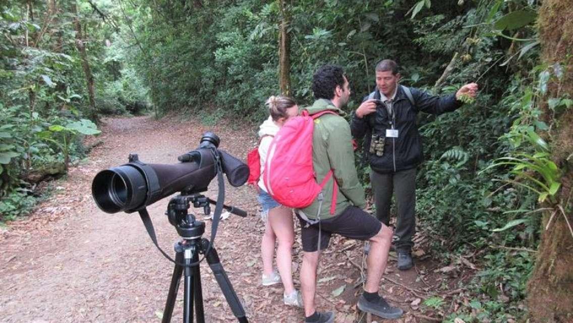 Walk in Santa Elena Cloud Forest Reserve