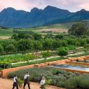 Glorious Gardens and Wine Private Tour
