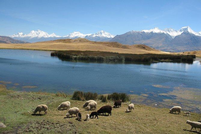 Full-Day Hike to Huilcaccoha Lake in the Cordillera Negra from Huaraz, Peru
