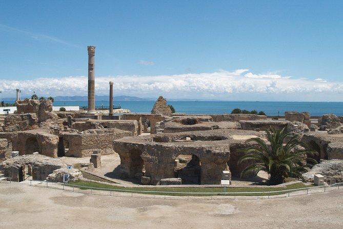 Private Day Tour Tunis Carthage Sidi Bou Said and Bardo Museum