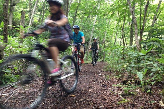 豊平峡温泉とランチも楽しめる札幌発のマウンテン バイク ツアー