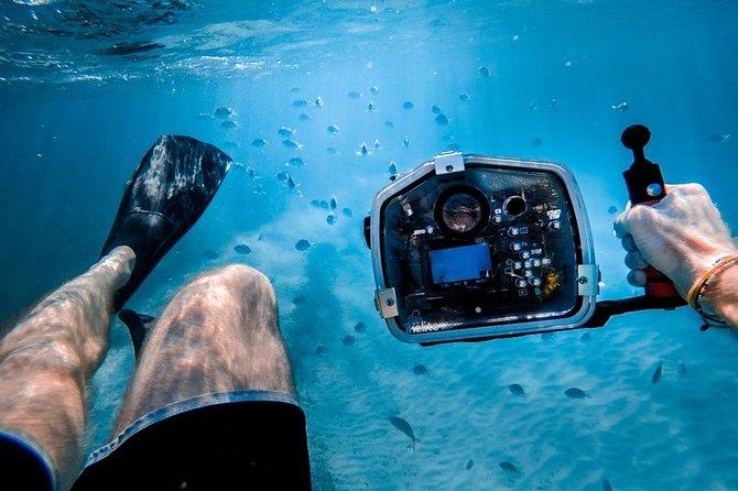 Underwater Video Snorkel at Turtle Town