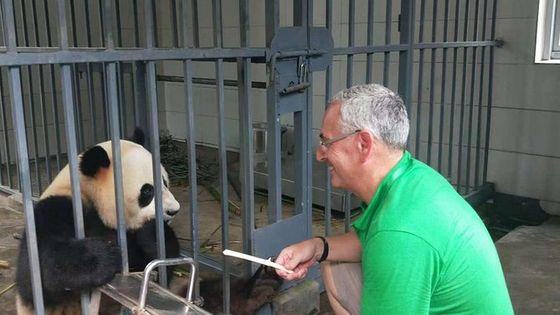 Private Panda Keeper Day Experience of Giant Panda Base Volunteer Program