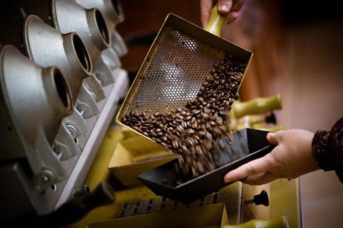 Britt Coffee Tour From San José