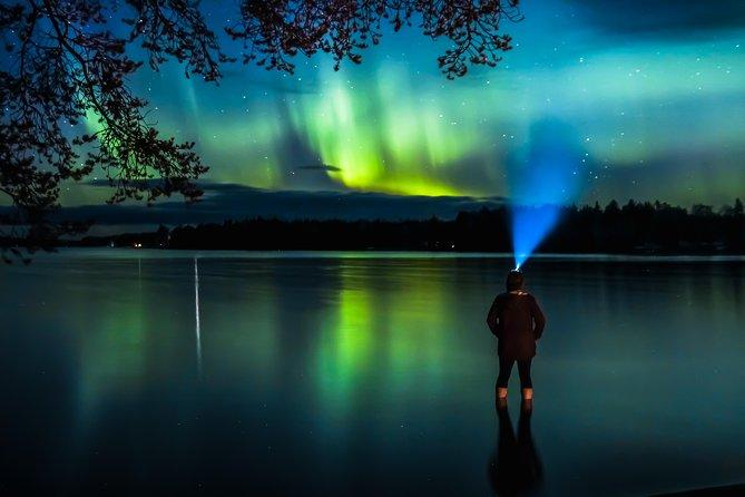 Autumn Aurora Borealis Picnic in Rovaniemi