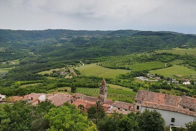 Full day tour of Istria with truffle tasting and lunch