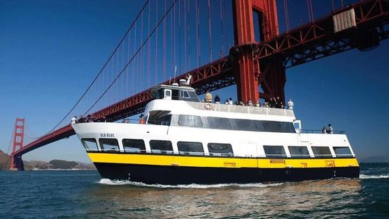 Straight to the Gate Access: San Francisco Bay Cruise