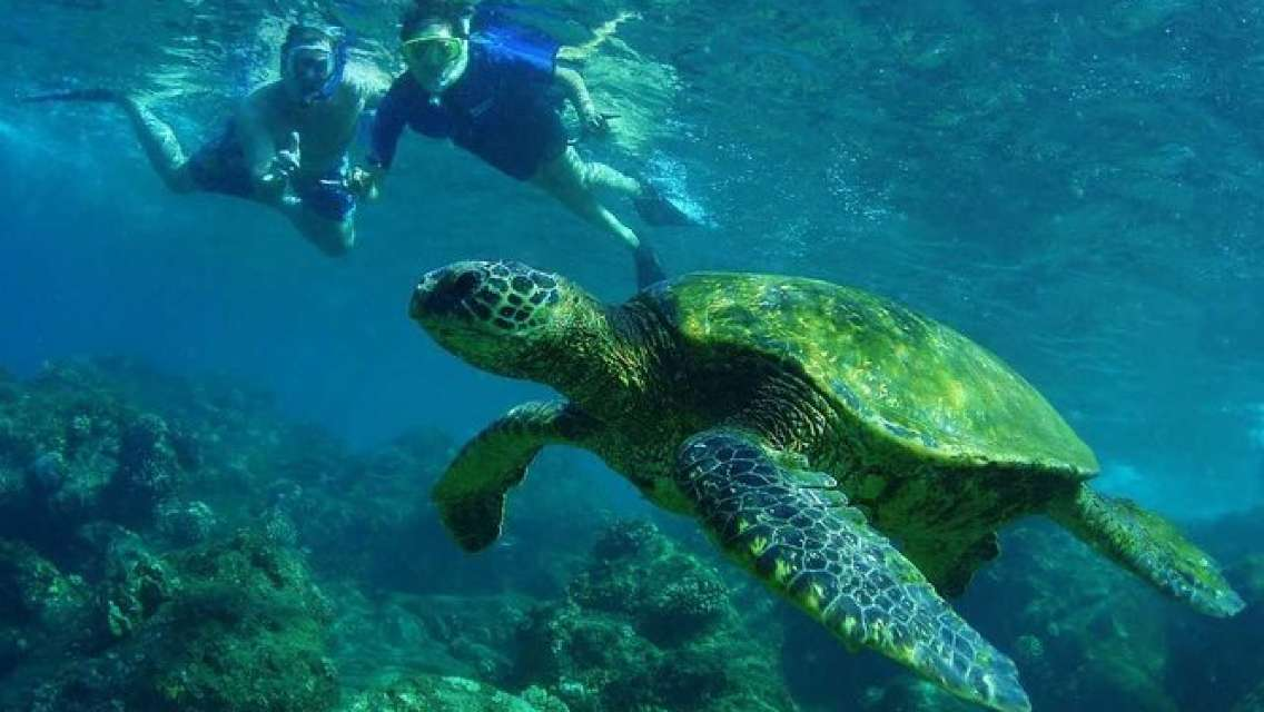 Grand Circle Island Snorkel Tour