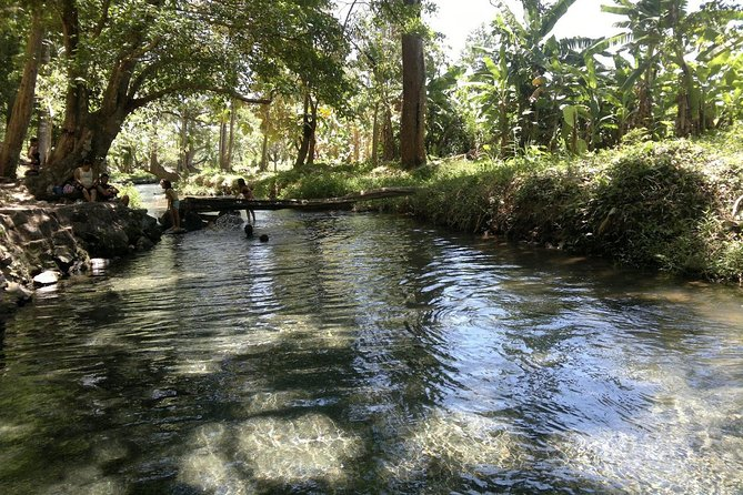Aguas Agrias - Cool Water Spring and Lagoon Excursion