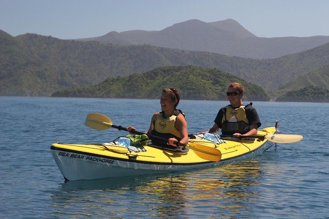 Half-Day Guided Sea Kayaking Tour from Anakiwa