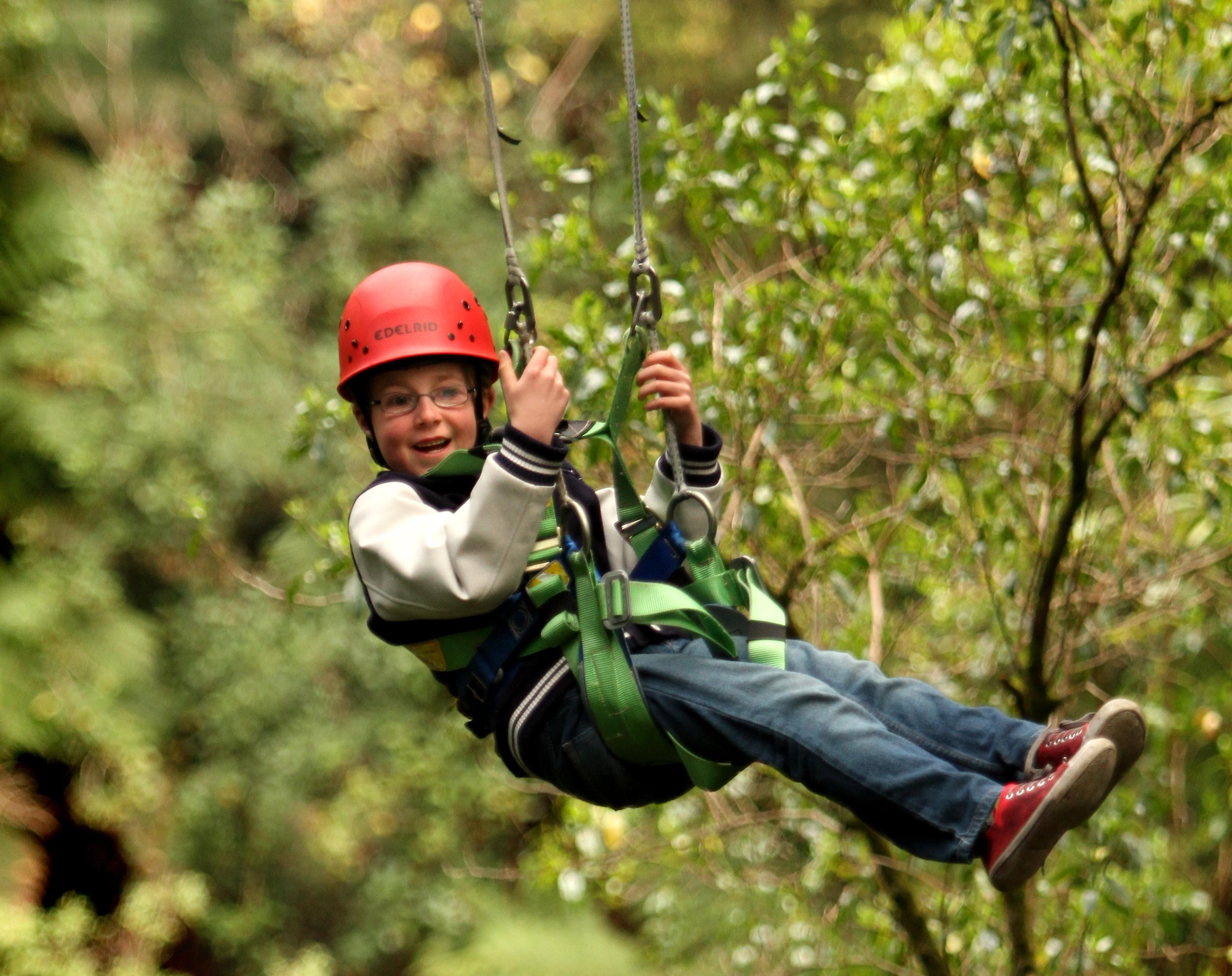 Illawarra Fly Treetop Walk + Zipline