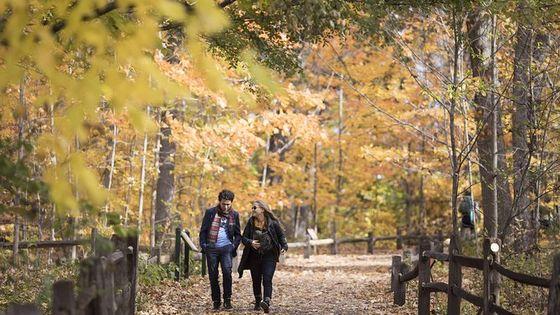 New York Botanical Garden Admission Ticket