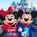洛杉磯加州迪士尼樂園一日遊(含門票/中英導遊/專車接送/圓夢之旅)