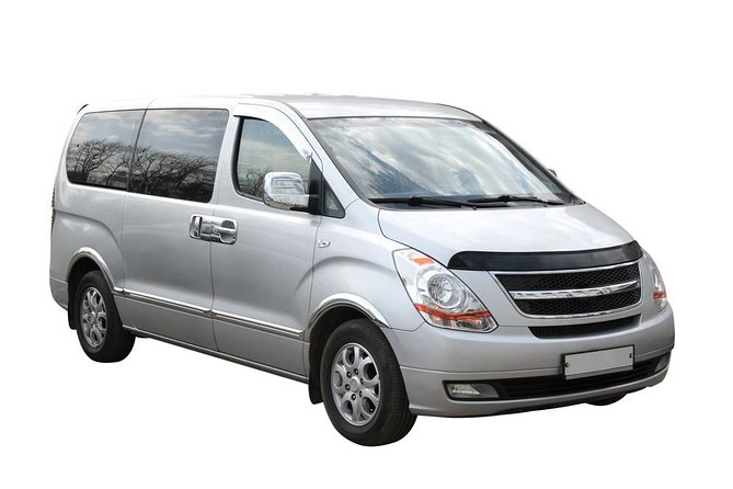 Transfer in Private Minivan from Tokyo Narita Airport to City Center