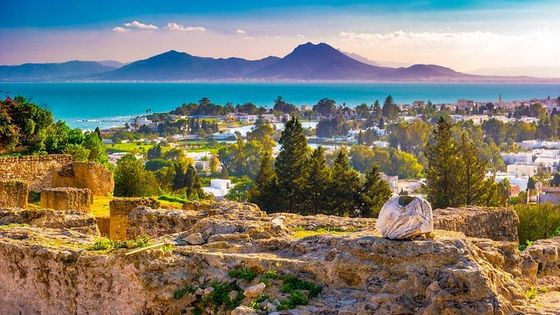 Half-Day Carthage, Sidi Bou Said Private Tour from Tunis