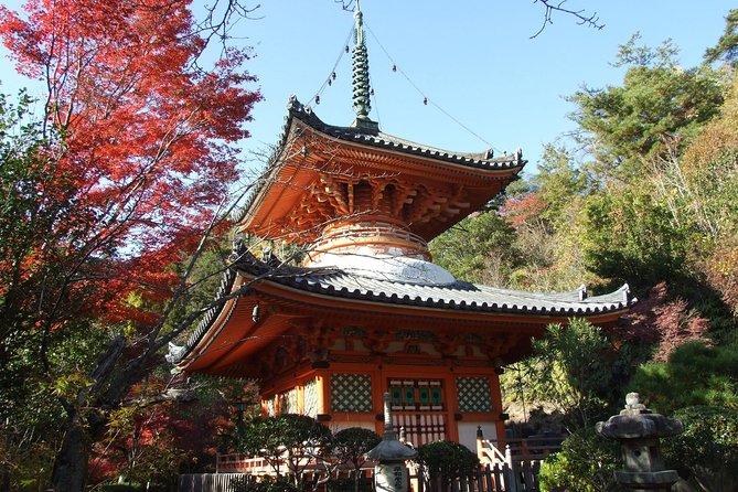 ガイド付きで行く、自分で予定をたてれるプライベート広島観光ツアー