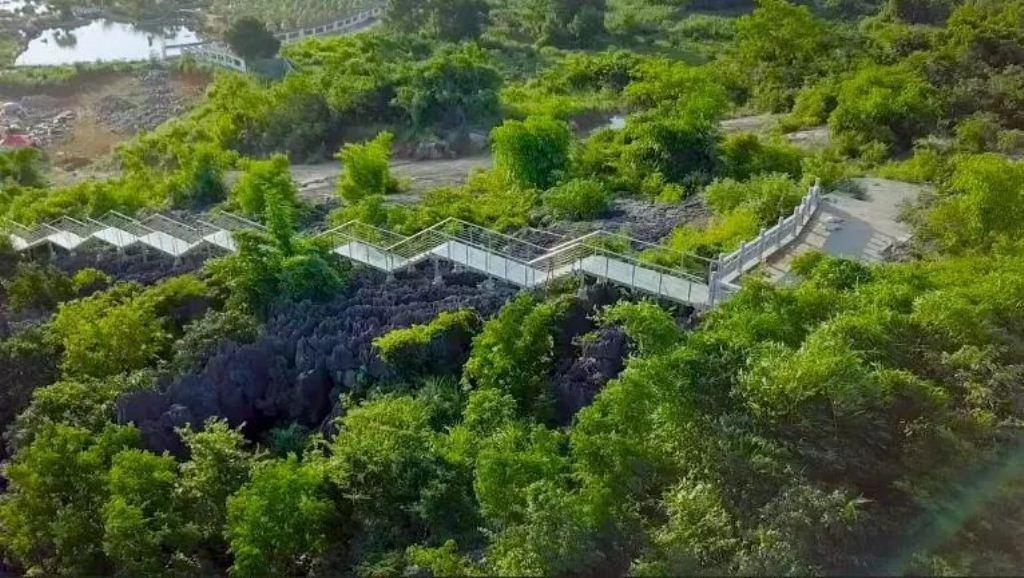 Shenjianshilin Sceneic Area