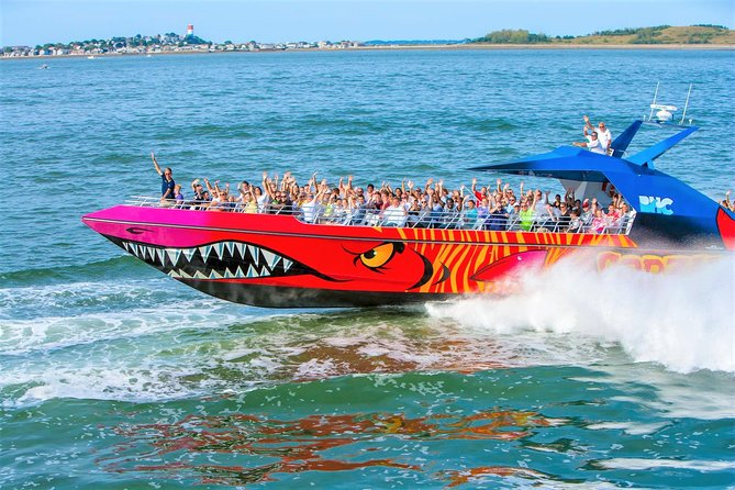 Boston Codzilla High-Speed Thrill Boat Ride