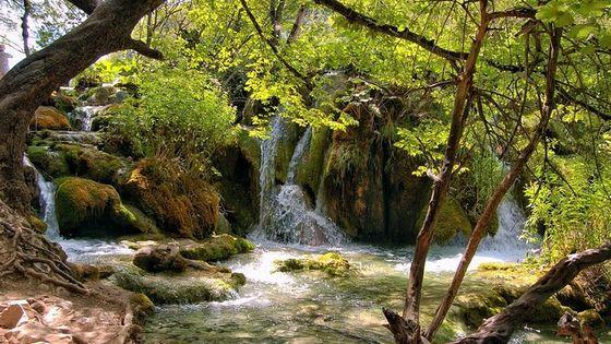 Split to Rijeka via Plitvice lakes Private tour