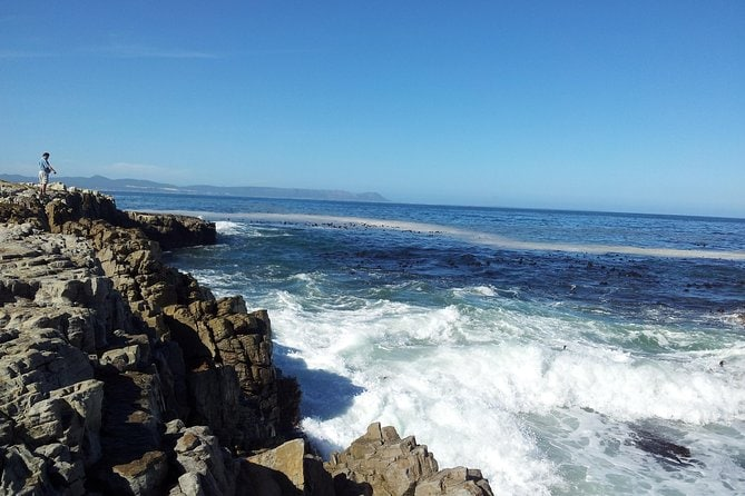 Full-Day Winelands and Hermanus Private Tour from Cape Town