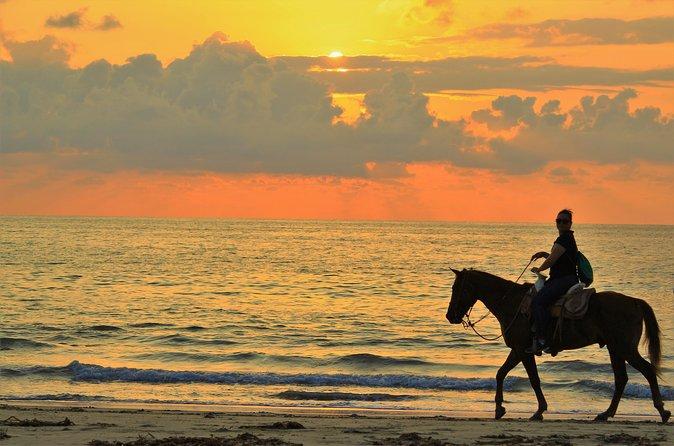 horseback riding SUNSET in the beach