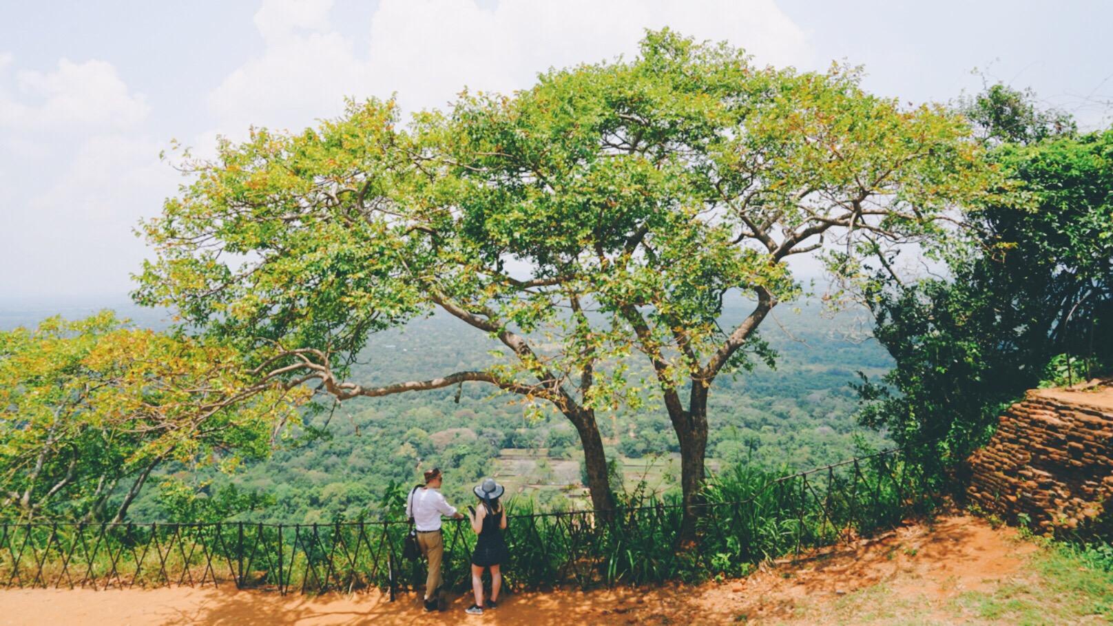 斯里蘭卡錫吉里耶獅子岩+斯里蘭卡丹布勒石窟一日遊(科倫坡出發+英文嚮導+在線中文管家)