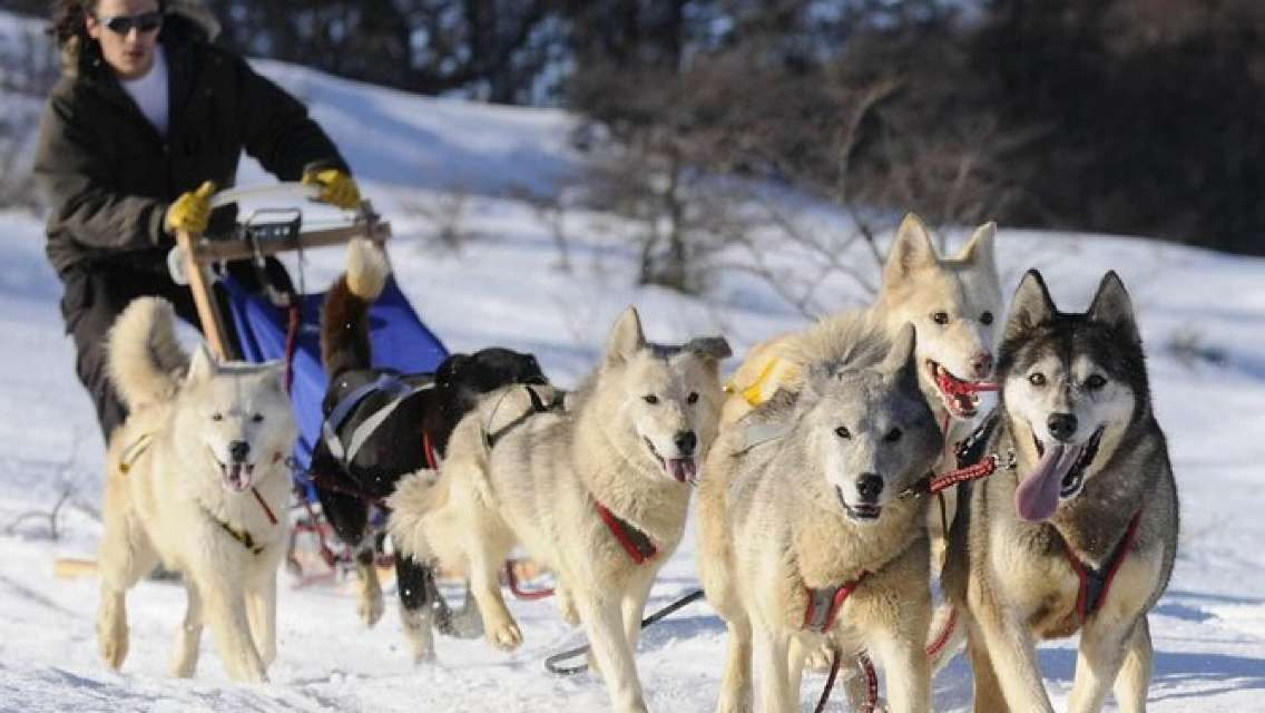 Ushuaia Night Adventure: Snowshoeing, Snowmobiling and Sled Ride