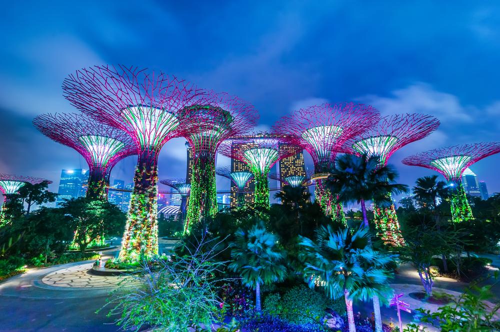 新加坡濱海灣花園門票(雲霧林+花穹)