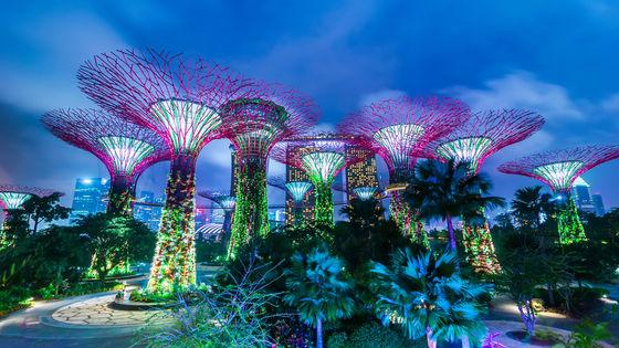 싱가포르 가든스 바이 더 베이 (클라우드 포레스트 & 플라워 돔) 입장권