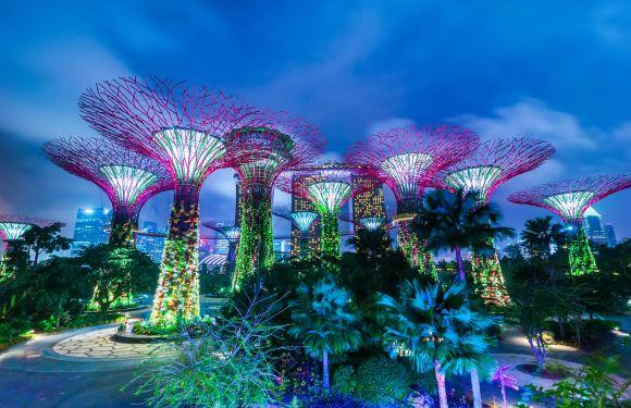 新加坡濱海灣花園-雙館(雲霧林+花穹)門票