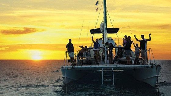 Sunset And city light tour on a forty foot catamaran, Snorkel tours daily