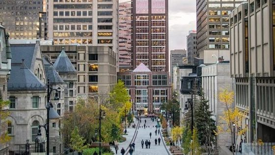 A Bit of Everything in Montreal: Mountain to River - PRIVATE Walking Tour
